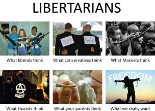 Libertarians - What we really want