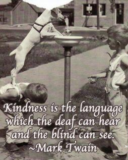 Mark Twain - Kindness is the language which the deaf can hear and the blind can see.