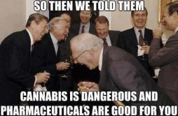 So then we told them... Cannabis is dangerous and pharmaceuticals are good for you