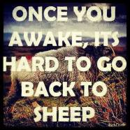 Once you awake, it's hard to go back to sheep